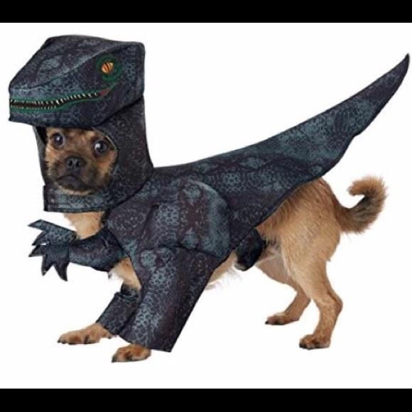 California Costumes Other - Dark Green_PUPASAURUS REX Dog Costume